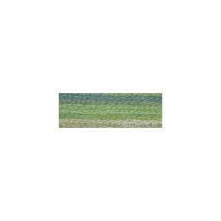 DMC 4065 Mouliné Color Variations borduurgaren