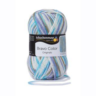Schachenmayer Bravo Color 2125 - Breeze